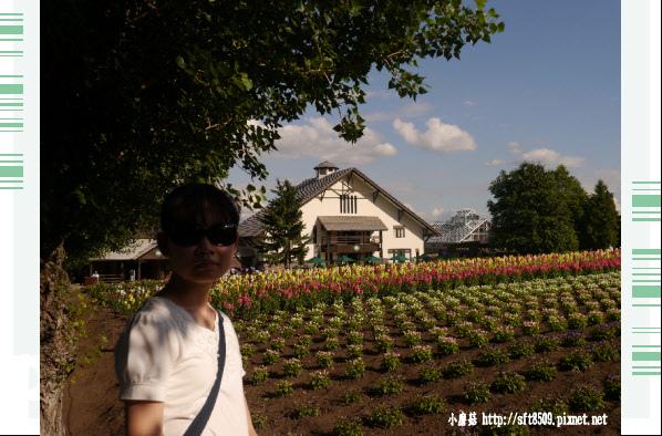 106.7.10.(97)富田農場.JPG