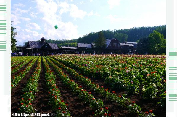 106.7.10.(100)富田農場.JPG