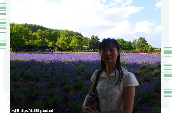 106.7.10.(104)富田農場.JPG