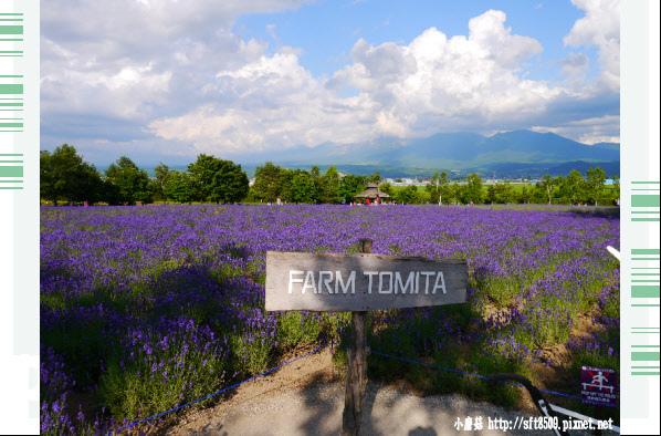 106.7.10.(118)富田農場.JPG