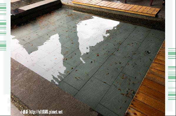 106.11.5.(11)金山-八煙溫泉會館.JPG