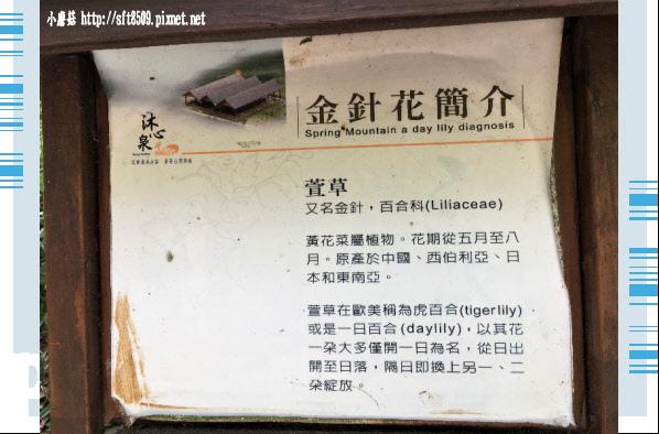107.5.26.(12)沐心泉休閒農場.JPG