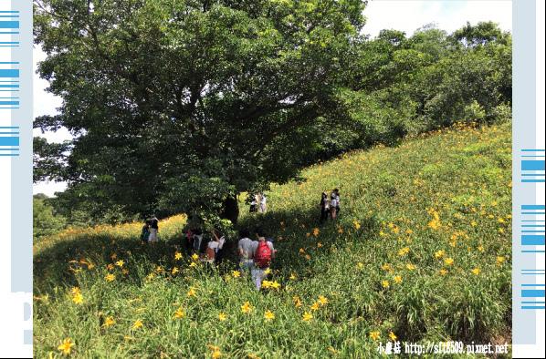 107.5.26.(15)沐心泉休閒農場.JPG
