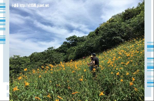 107.5.26.(20)沐心泉休閒農場.JPG