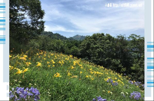 107.5.26.(59)沐心泉休閒農場.JPG