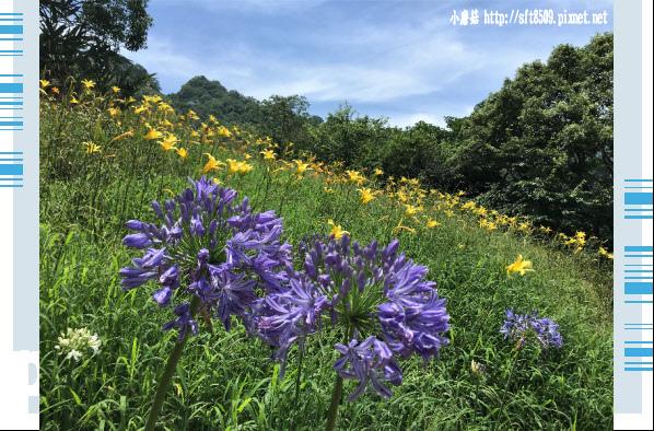 107.5.26.(61)沐心泉休閒農場.JPG