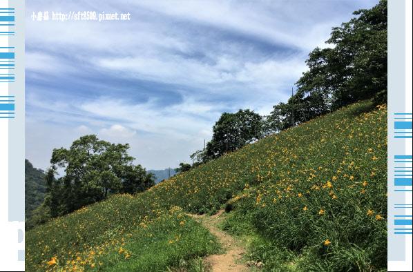 107.5.26.(68)沐心泉休閒農場.JPG