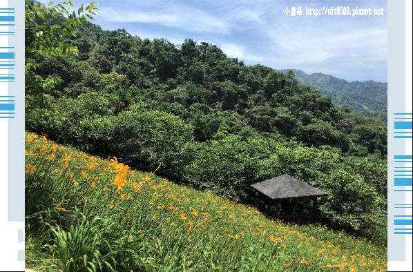 107.5.26.(81)沐心泉休閒農場.JPG