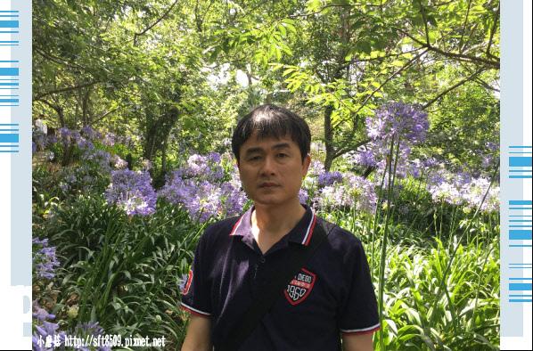 107.5.26.(102)沐心泉休閒農場.JPG