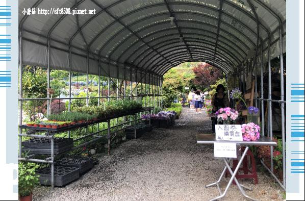 107.5.31.(10)竹子湖-大梯田生態農園.JPG