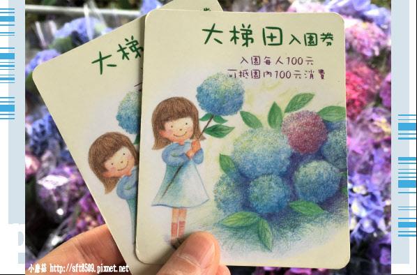 107.5.31.(11)竹子湖-大梯田生態農園.JPG