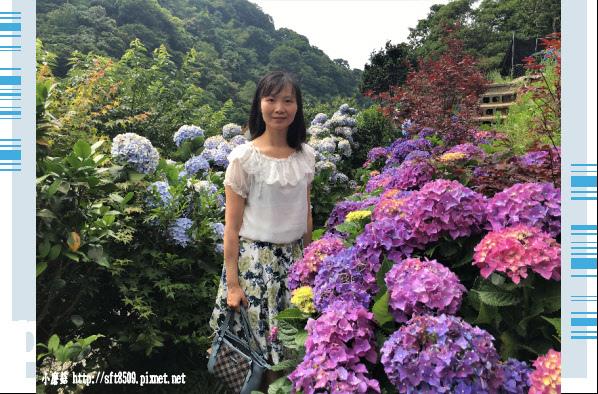 107.5.31.(26)竹子湖-大梯田生態農園.JPG