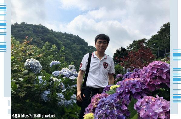 107.5.31.(30)竹子湖-大梯田生態農園.JPG