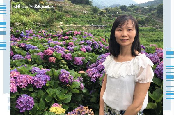 107.5.31.(88)竹子湖-大梯田生態農園.JPG