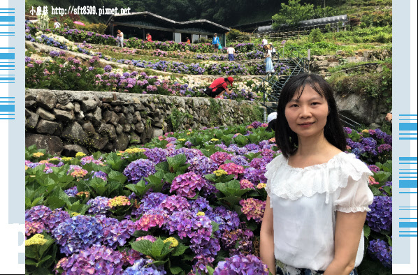 107.5.31.(121)竹子湖-大梯田生態農園.JPG