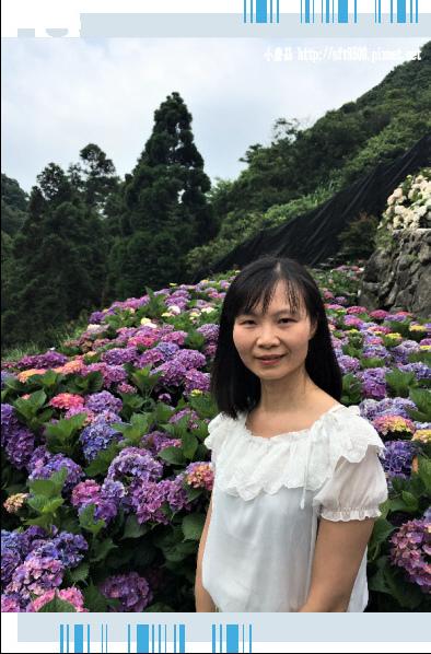 107.5.31.(128)竹子湖-大梯田生態農園.JPG