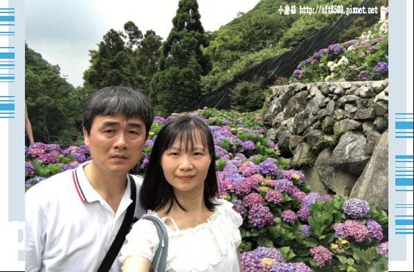 107.5.31.(150)竹子湖-大梯田生態農園.JPG