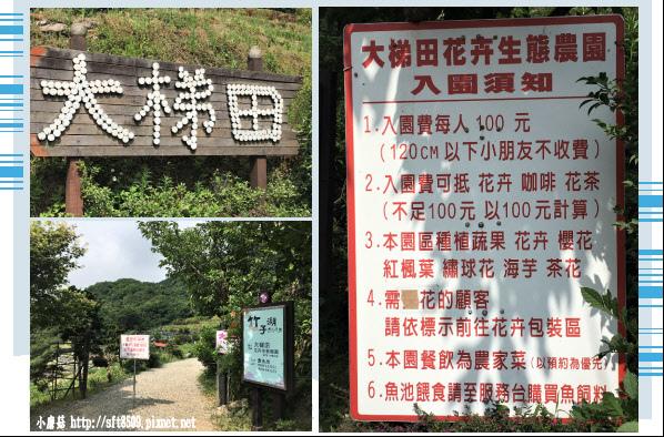 107.5.31.(5-1)竹子湖-大梯田生態農園