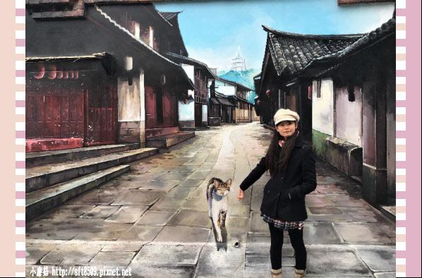 107.2.4.(53)嘉義-菁埔貓的世界.JPG