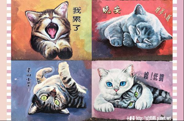 107.2.4.(94)嘉義-菁埔貓的世界.JPG