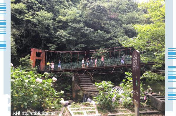 107.6.9.(18)杉林溪森林遊樂區.JPG