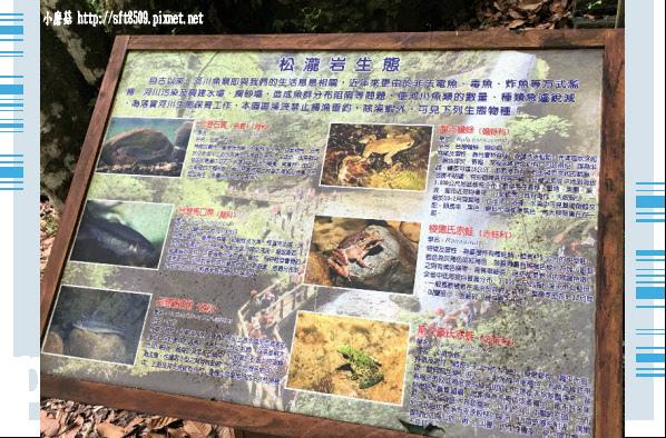 107.6.9.(19)杉林溪森林遊樂區.JPG