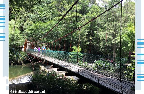 107.6.9.(56)杉林溪森林遊樂區.JPG