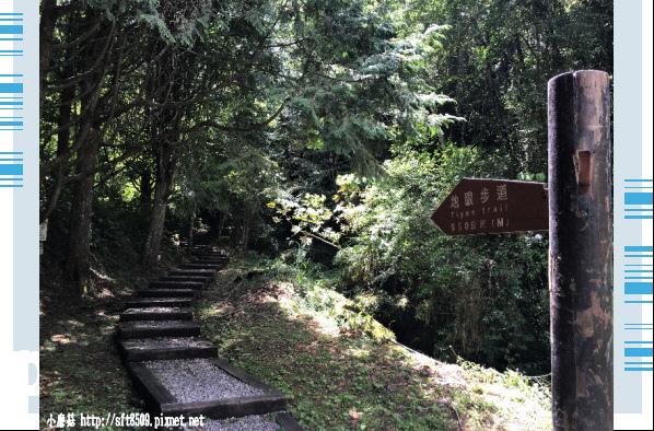 107.6.9.(61)杉林溪森林遊樂區.JPG