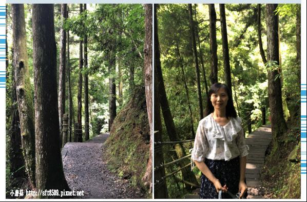 107.6.9.(65)杉林溪森林遊樂區.JPG