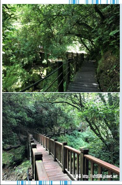 107.6.9.(67)杉林溪森林遊樂區.JPG