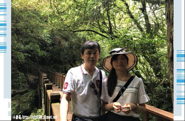 107.6.9.(69)杉林溪森林遊樂區.JPG