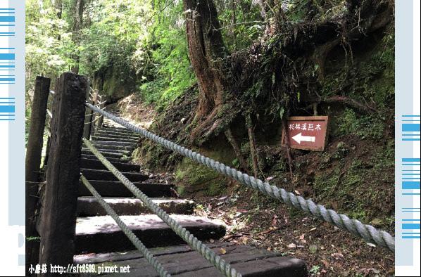 107.6.9.(74)杉林溪森林遊樂區.JPG