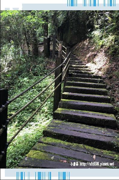 107.6.9.(75)杉林溪森林遊樂區.JPG