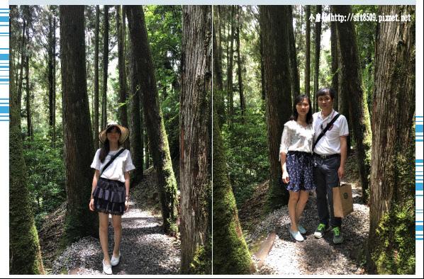 107.6.9.(89)杉林溪森林遊樂區.JPG