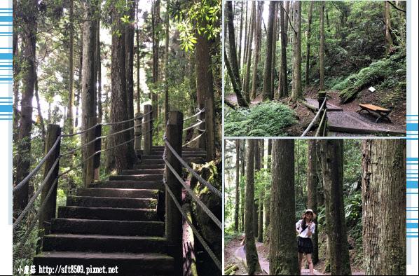 107.6.9.(96)杉林溪森林遊樂區.JPG