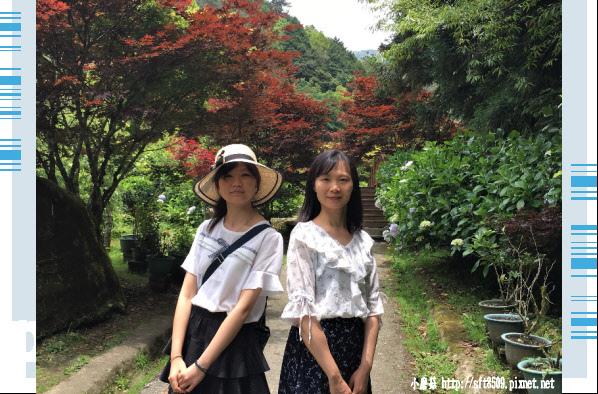 107.6.9.(139)杉林溪森林遊樂區.JPG
