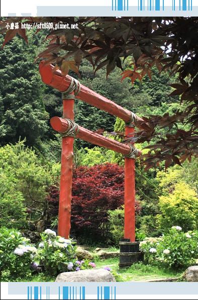 107.6.9.(155)杉林溪森林遊樂區.JPG