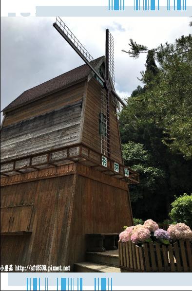 107.6.9.(207)杉林溪森林遊樂區.JPG