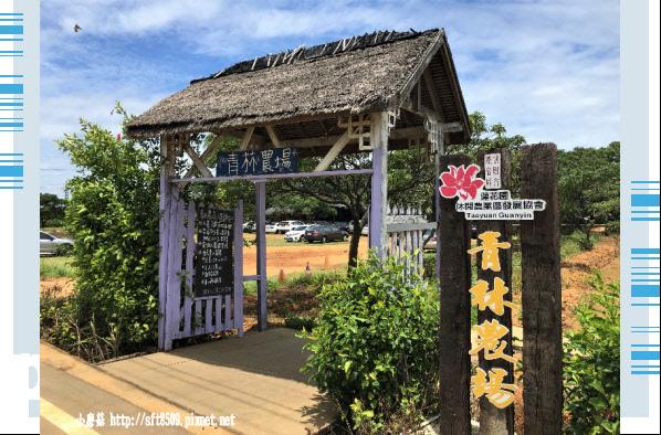 107.6.17.(11)青林農場.JPG