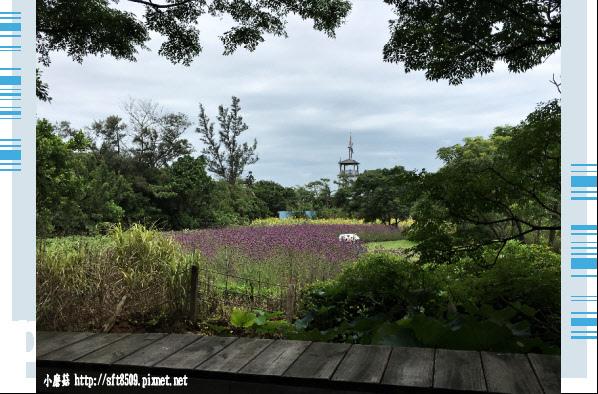 107.6.17.(16)青林農場.JPG