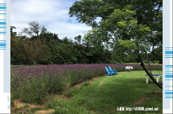 107.6.17.(18)青林農場.JPG