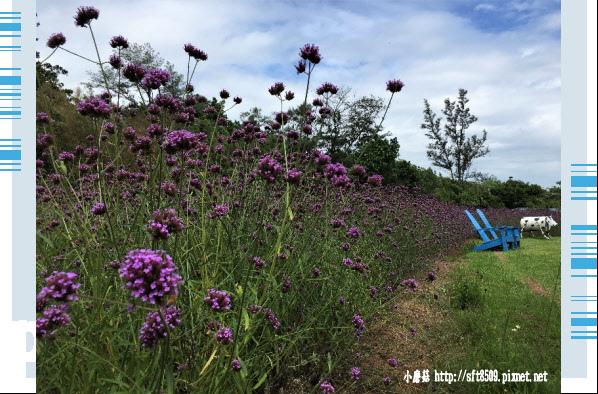 107.6.17.(20)青林農場.JPG