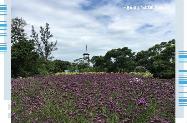 107.6.17.(35)青林農場.JPG