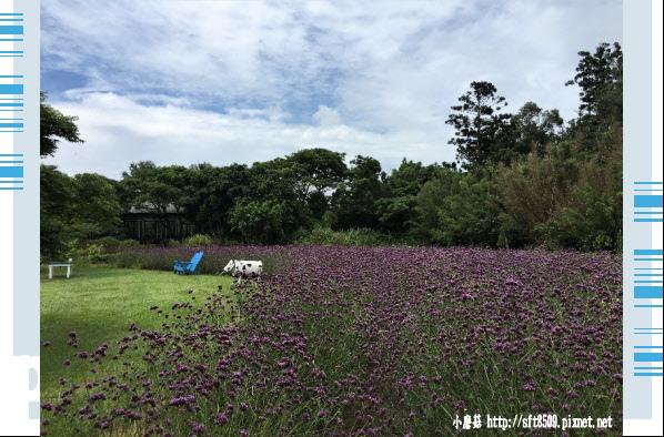 107.6.17.(66)青林農場.JPG