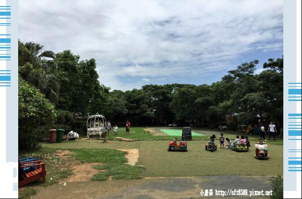 107.6.17.(82)青林農場.JPG