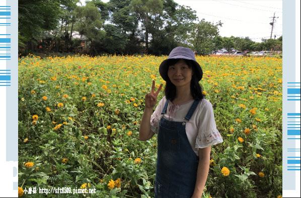107.6.17.(89)青林農場.JPG