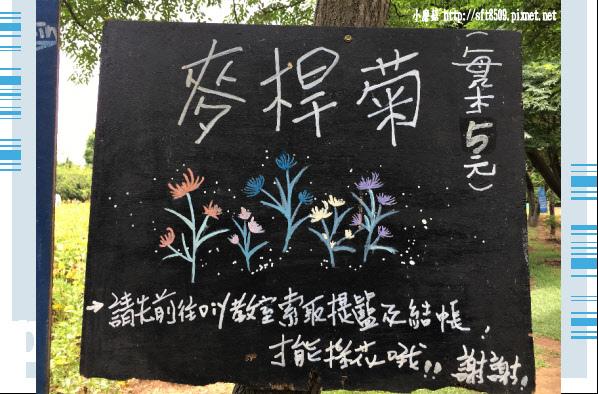 107.6.17.(90)青林農場.JPG