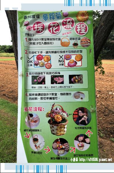 107.6.17.(91)青林農場.JPG