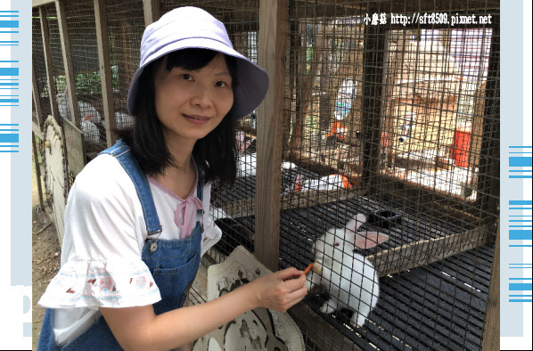 107.6.17.(99)青林農場.JPG