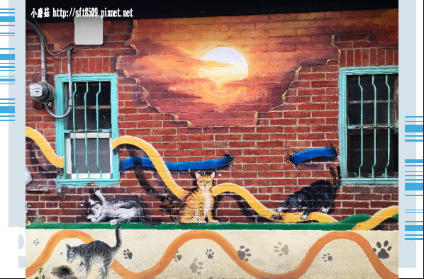 107.6.30.(8)雲林虎尾-屋頂上的貓.JPG